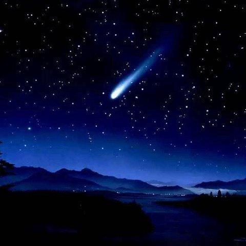 Beautiful stars♥