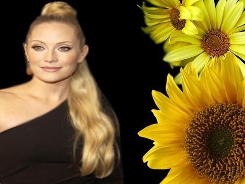 Emily Procter-Sunflowers