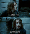 Gellert Grindelwald &lt;3 - harry-potter-vs-twilight photo