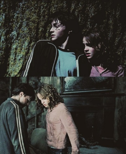 Hermione & Harry