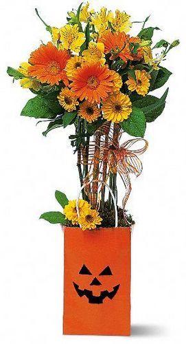 Jack-O-Flower