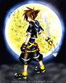Kingdom Kearts Sora - my-friends photo