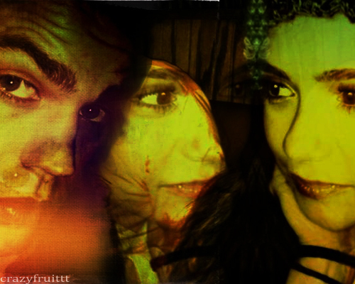 Paul Wesley and Nina Dobrev wallpaper entitled Paul&Nina