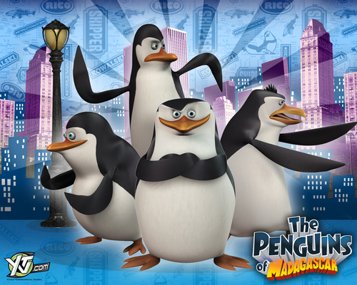 Penguins of Madagascar kertas dinding (City Backround)