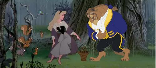 Slleping beauty and the beast