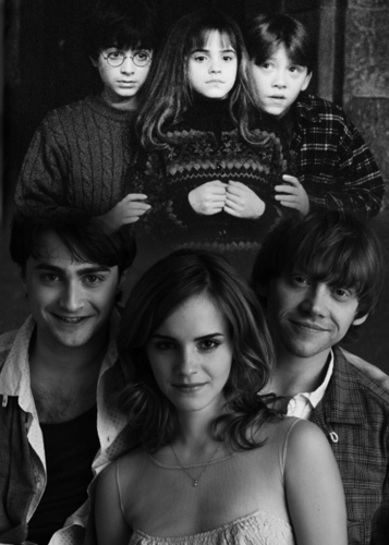 Harry Potter Vs. Twilight wallpaper probably containing a sign, a bouquet, and a bridesmaid entitled Then and Now