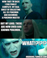 Voldemort's Discovery