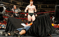 WWE Champion - Sheamus