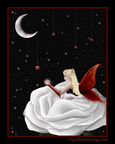 Wish upon a 星, つ星