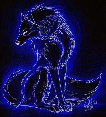 Wolves-wolves