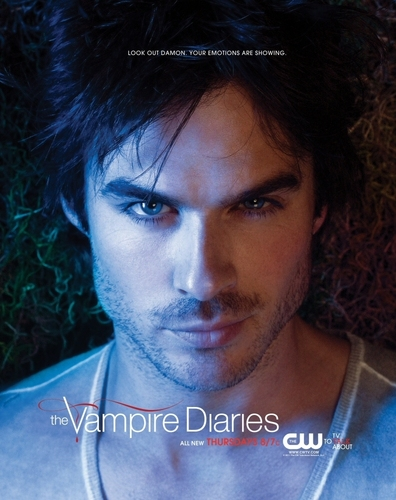 The Vampire Diaries wallpaper with a portrait entitled damon