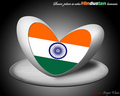 indian flag - india photo