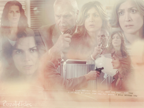 Rizzoli & Isles wallpaper possibly with a portrait called wall by campi
