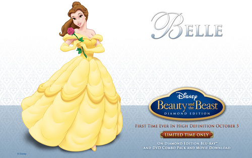 Beauty and the Beast wallpaper possibly containing a bouquet called Beauty and the Beast Wallpaper