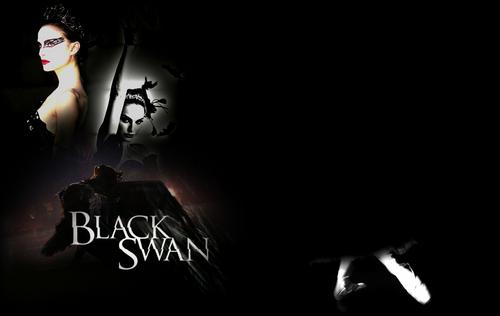 Black cisne fondo de pantalla