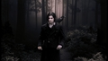 Damon Salvatore - the-vampire-diaries-books photo
