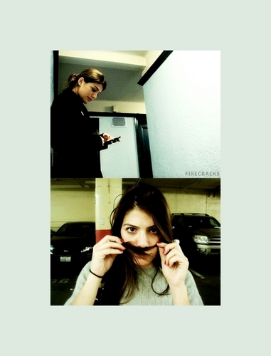 Jared Padalecki & Genevieve Cortese 壁紙 possibly containing a sign, a packing box, and a ターンテーブル, ターン テーブル entitled GenPAdalecki