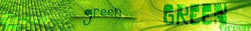 Green Banner I