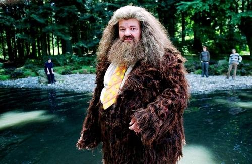 Harry Potter Hagrid :))