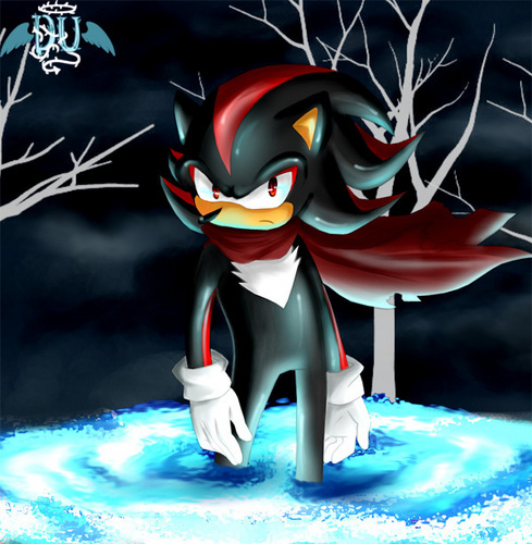 JUST SHADOW - shadow-forever Fan Art