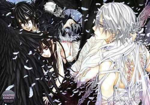 vampire knight wallpaper entitled KANAME,ZERO & YUUKI