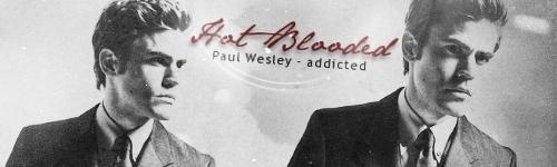 Paul Wesley Banner ♥