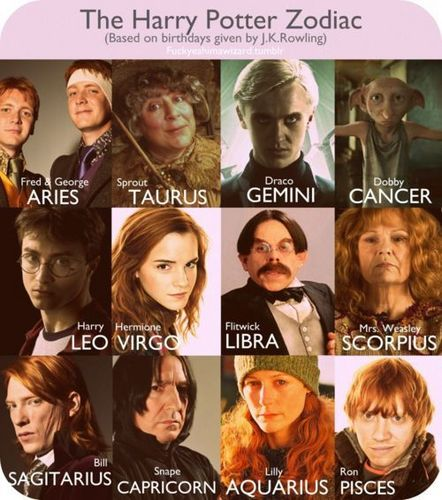 The Harry Potter Zodiac