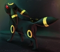 Umbreon - umbreon photo