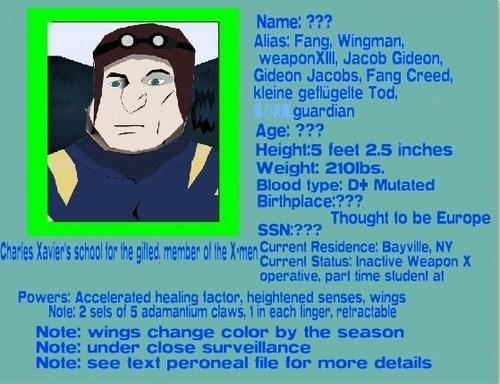 Wingman, S.H.I.E.L.D. personnel file