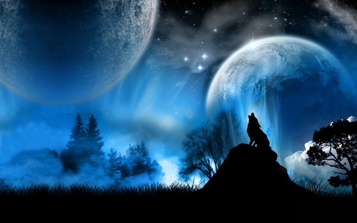 Wolves Wallpaper Titled Wolf