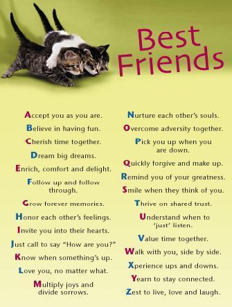best friends images bffl alphabetic letter wallpaper and background photos