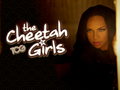 cheetah - the-cheetah-girls wallpaper