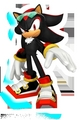 free riders shadow!! - shadow-the-hedgehog photo