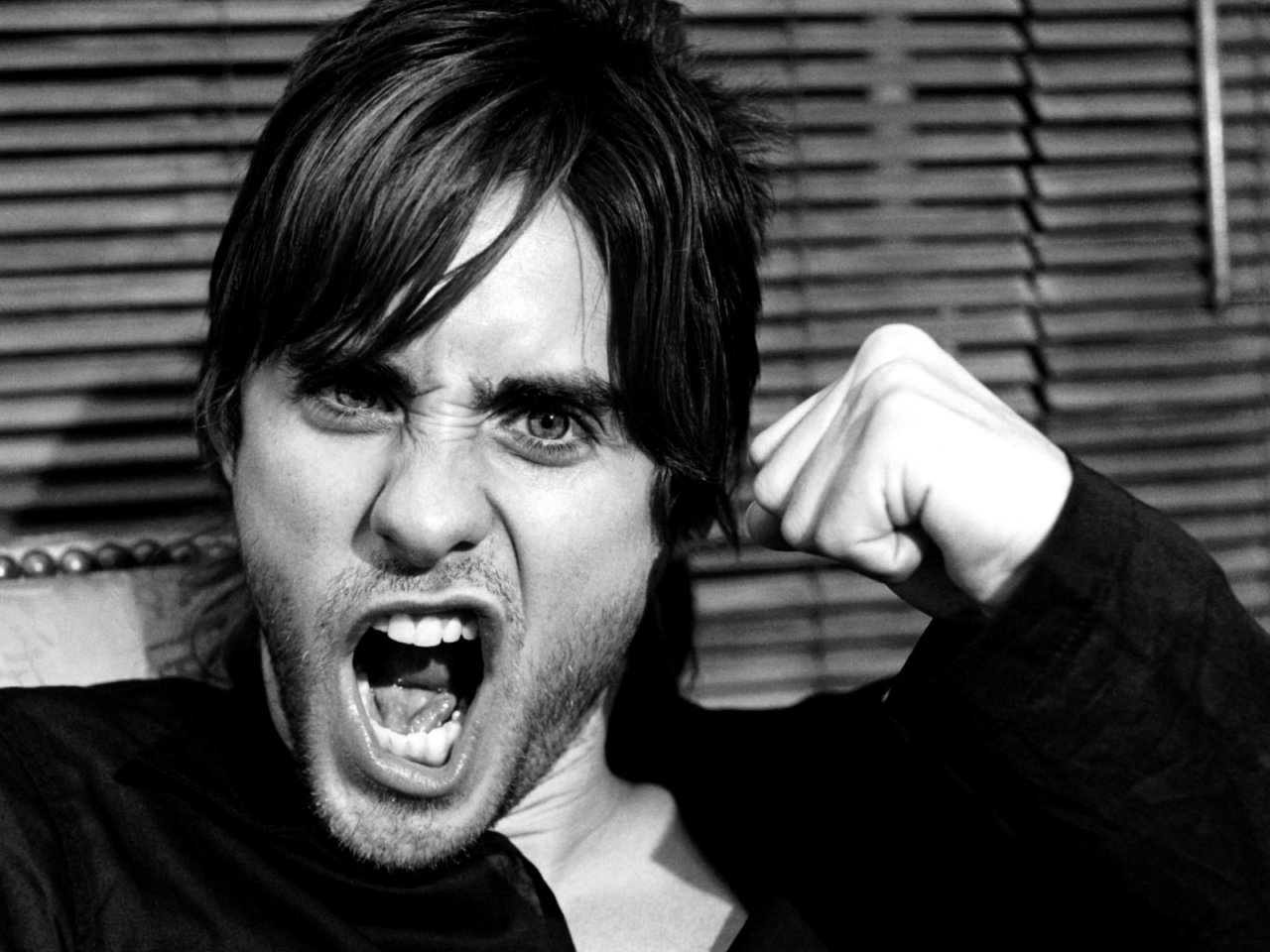 Jared Leto - Gallery Colection