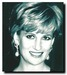 lady diana - princess-diana icon