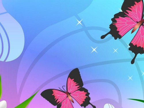 담홍색, 핑크 나비