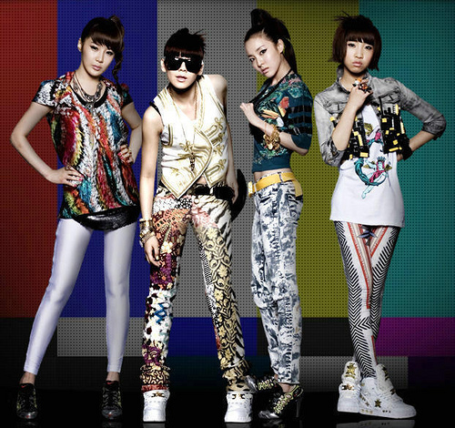 http://images4.fanpop.com/image/photos/18500000/-2ne1-18577272-500-470.jpg