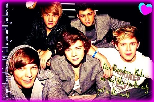 1D = Heartthrobs (Love Them All So Much) 100% Real :) x