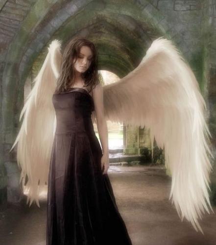 thiên thần hình nền titled Angel