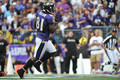 Anquan Boldin - baltimore-ravens photo