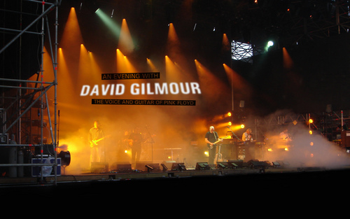 David Gilmour of Pink Floyd - pink-floyd Wallpaper