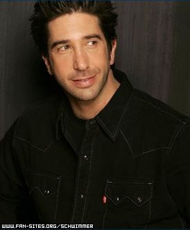 David Schwimmer wallpaper probably containing a portrait titled David Schwimmer