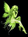 Green Angel Fairy - absinthe photo