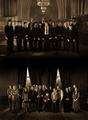 HP - harry-potter photo