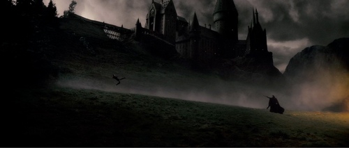 Harry gets owned wallpaper