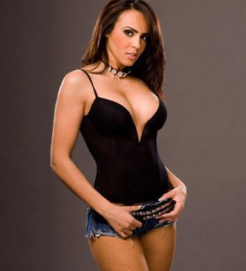 WWE Divas achtergrond containing a maillot called Layla El