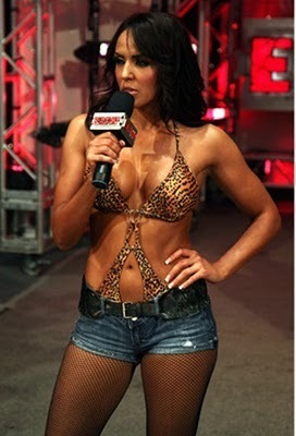 WWE Divas پیپر وال possibly containing a swimsuit کا, سومساٹ titled Layla El