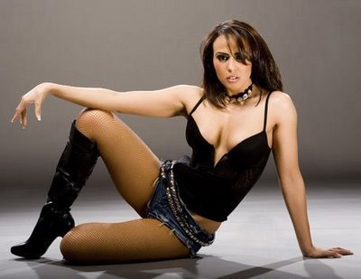 Diva WWE kertas dinding probably containing a bustier and attractiveness entitled Layla El