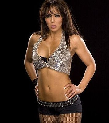WWE Divas achtergrond probably containing a bikini called Layla El