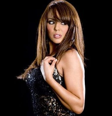 Diva WWE kertas dinding containing attractiveness and a portrait entitled Layla El